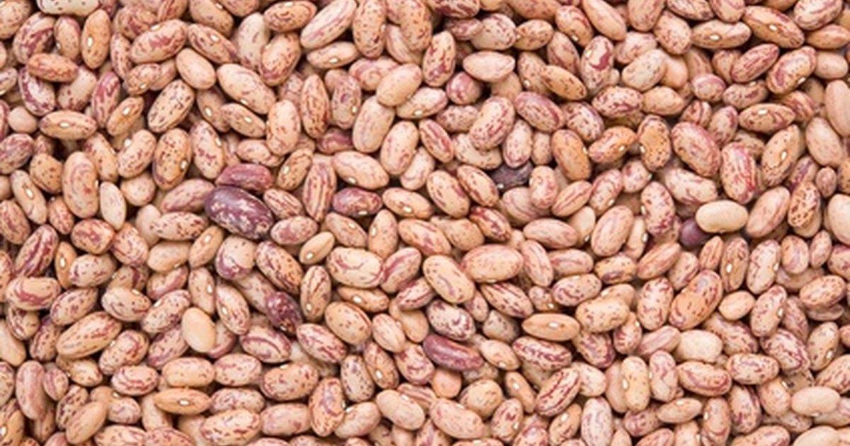 The Best Vegetarian Pinto Beans | LIVESTRONG.COM