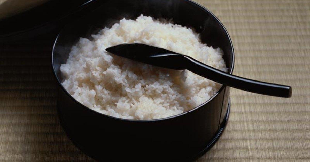 Rice university creative writing