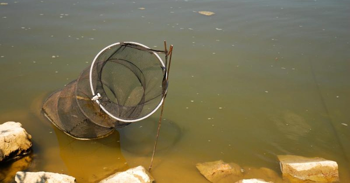 Tips on fishing hoop nets livestrong com for Fishing hoop nets