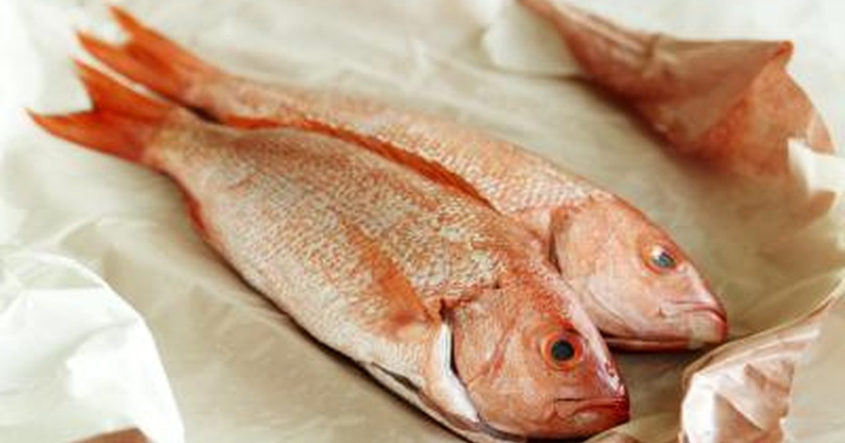 Names of fish to eat for What is the best fish to eat