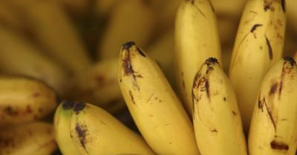How to Wash Banana & Melon Skins to Get Rid of Fruit Fly ...