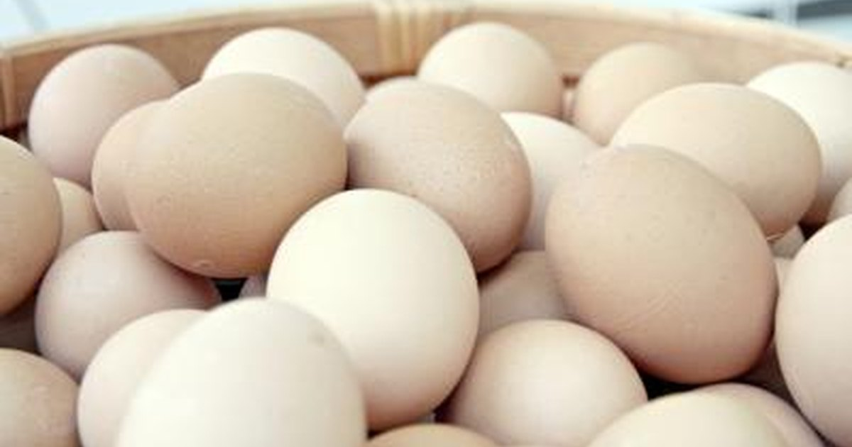 Can You Eat Raw Eggs While Breastfeeding? | LIVESTRONG.COM