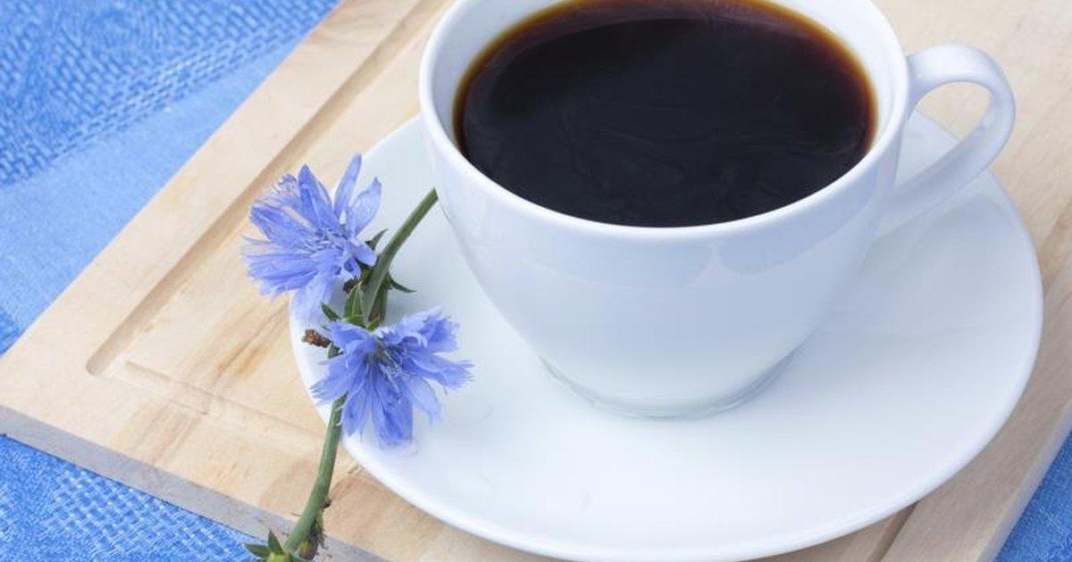 Chicory Drink Benefits