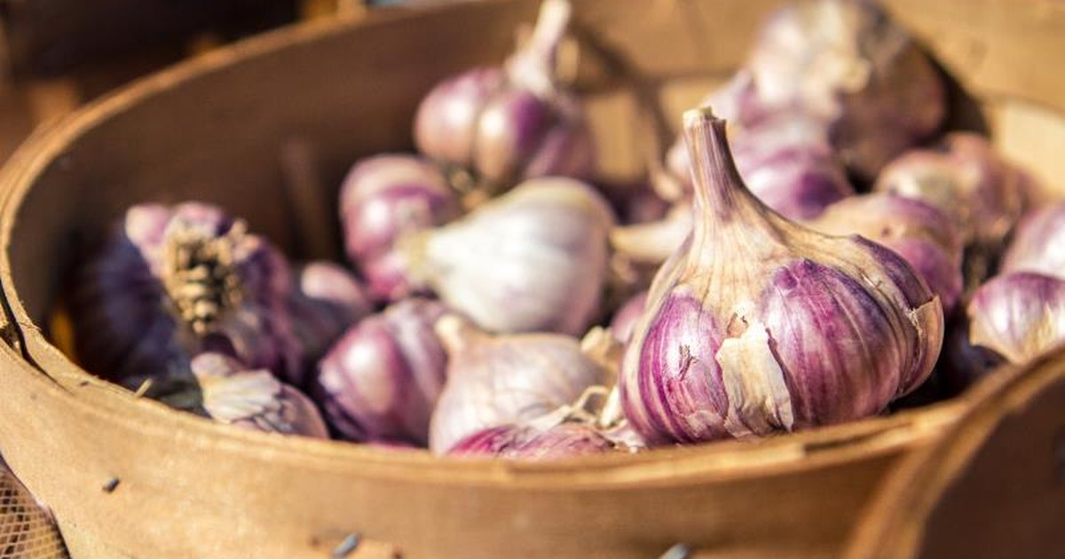 Does garlic thin your blood