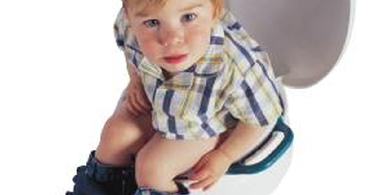 how to potty train a 21 month old boy