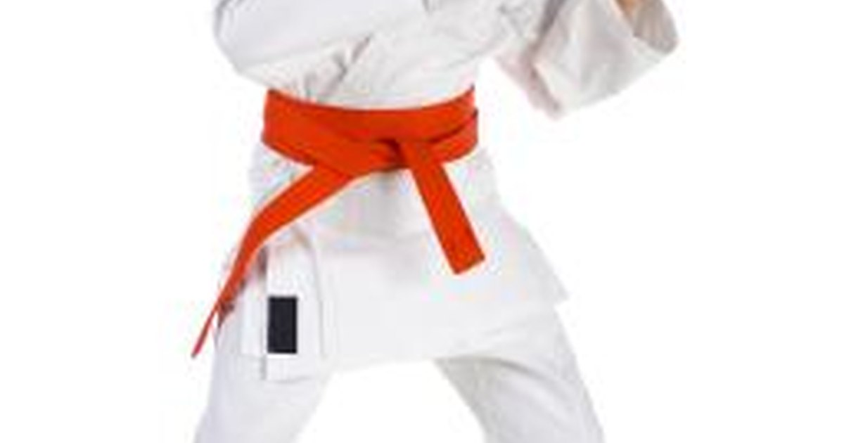 Learn Karate at Home? – Shotokan Karate Online