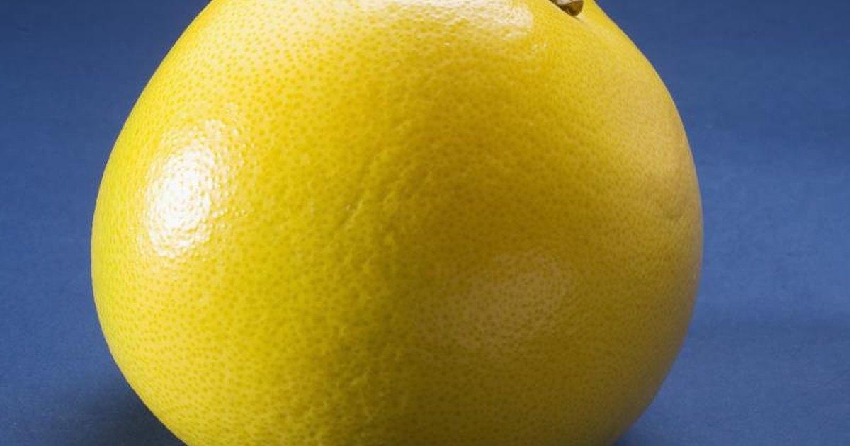 Fiber in a grapefruit