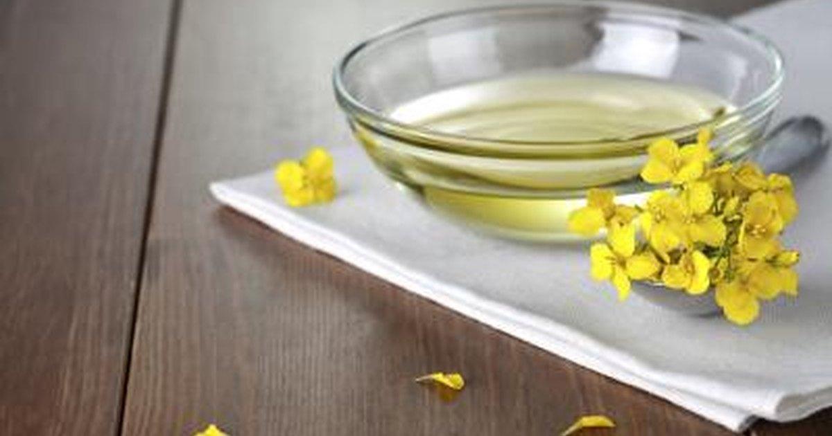 corn oil vs canola oil livestrong com. Black Bedroom Furniture Sets. Home Design Ideas