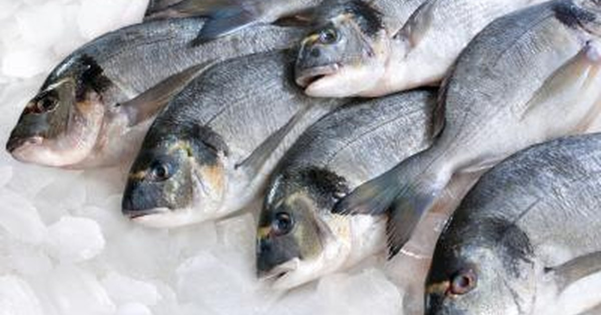 How Long Can You Keep Fresh Fish In The Fridge Before You