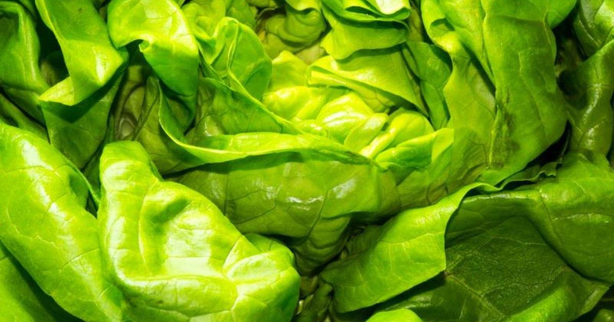 Olive garden salad nutrition facts livestrong com for Olive garden nutritional information