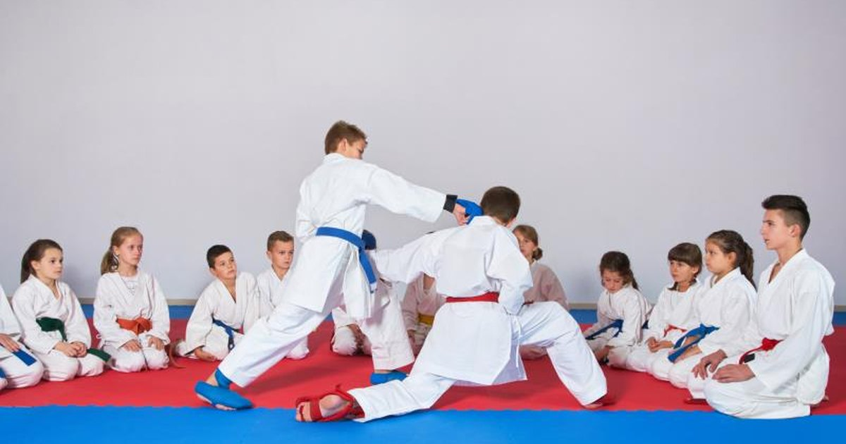 karate essays Then those people will usually perform the stereotypically karate pose, the crane stance but martial arts is not all about kicking, punching, screaming really loud.