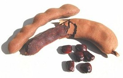How to Use Tamarind