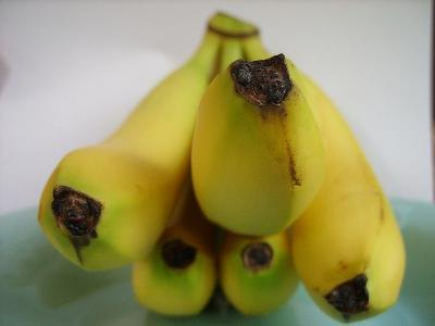 Bananas and Folic Acid