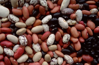 Carb Count in Beans