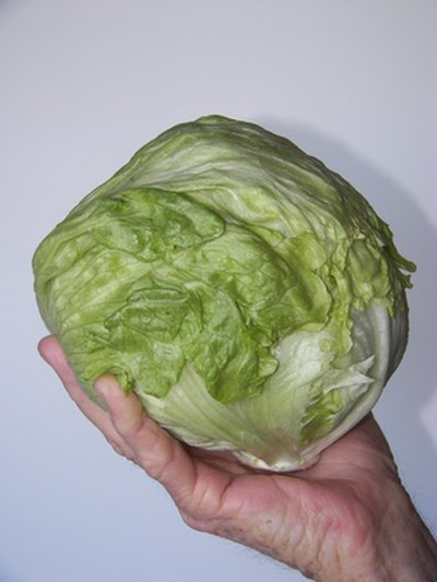 Lettuce & Irritable Bowel Syndrome