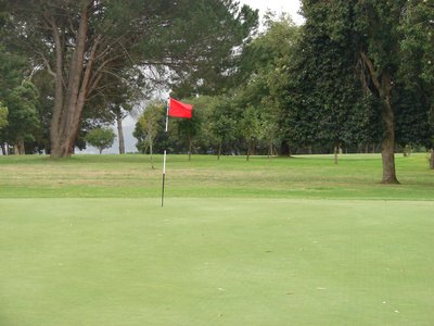The Height of a Golf Flag Stick