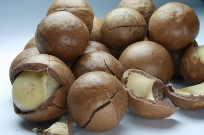 What Are the Benefits of Macadamia Nut Butter?