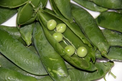 Nutritional Values for Peas