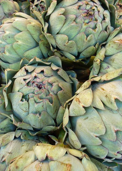 Artichoke leaves are not part of the kosher diet.