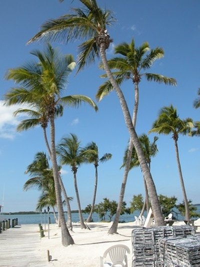 Beachfront RV Parks in Florida