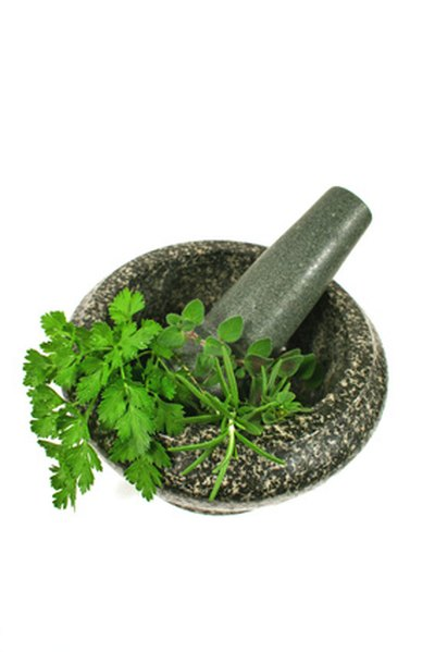 Herbs for Suppressing the Appetite