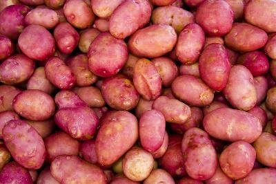 """Potatoes Not Prozac"" Diet"