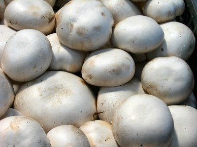 Vitamins and Minerals Contained in Mushrooms