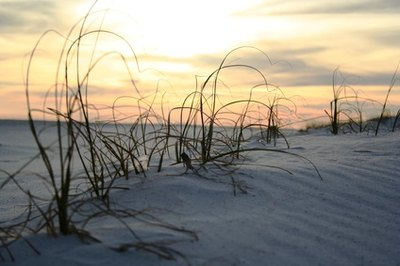 Beaches Near Jacksonville, North Carolina