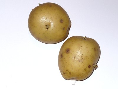 Yukon Gold Potato Nutrition