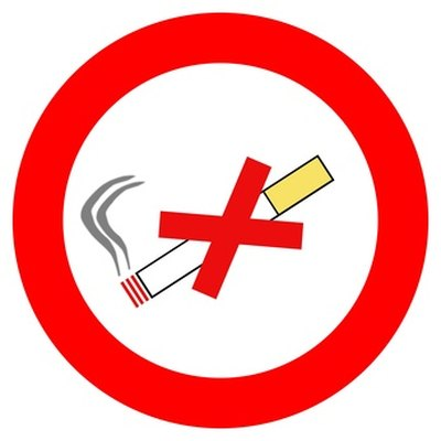 essay smoking should not be banned