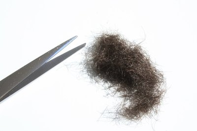 What Causes Body Hair Growth?