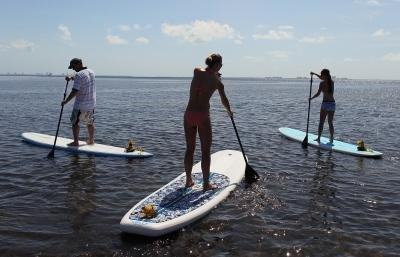 Paddleboard Exercises