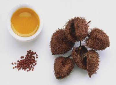 Health Benefits of Annatto Seeds and Leaves