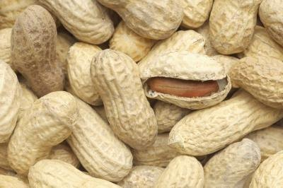Can I Eat Peanut Shells?