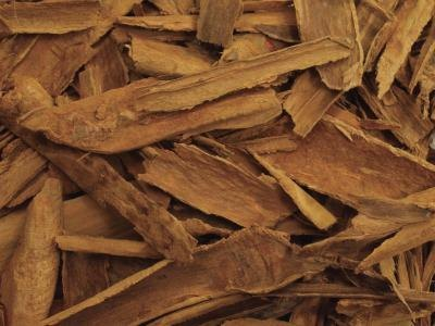 The Health Benefits of Ceylon vs. Cassia Cinnamon