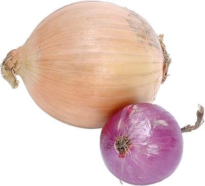 Nutritional Data on Sauteed Onions