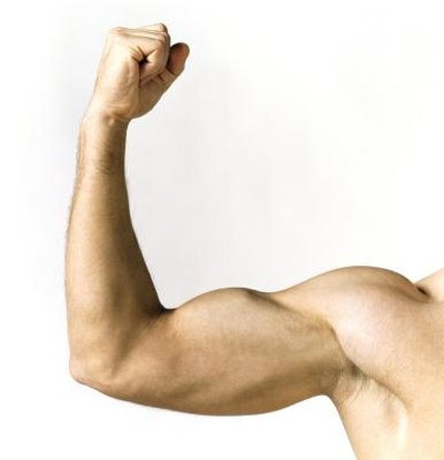 Man's flexed bicep.