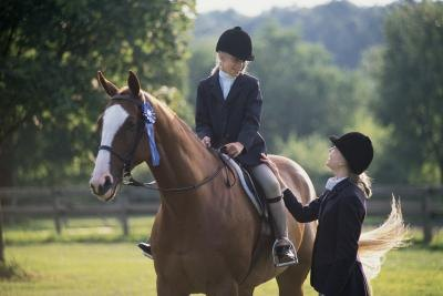 The Best Flatwork Exercises