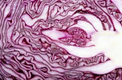 What Are the Benefits of Drinking Red Cabbage Juice?