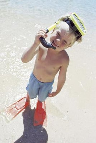 Shallow Snorkeling Sites for Kids in Florida