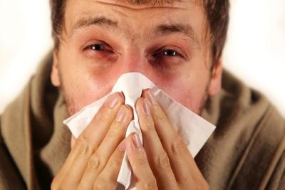 Remedies for the Common Cold