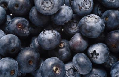 The Benefits of Blueberry Supplements