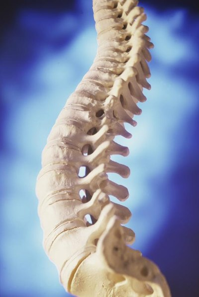 Physical Therapy for Lumbar Compression Fractures
