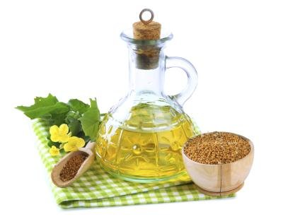 The Properties of Vegetable Oil & Skin Care