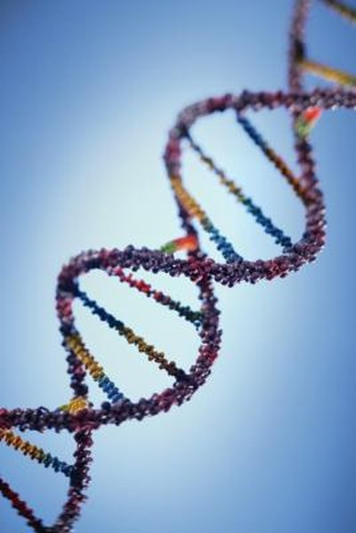 Fatal Genetic Diseases