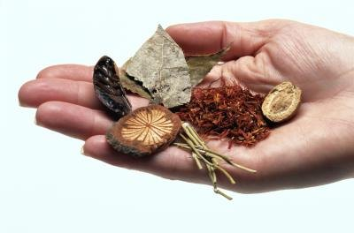 Natural Antifungal Herbs