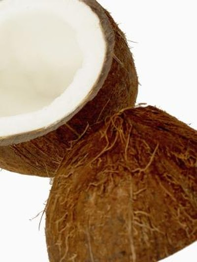 Nutritional Content of Fresh Coconut