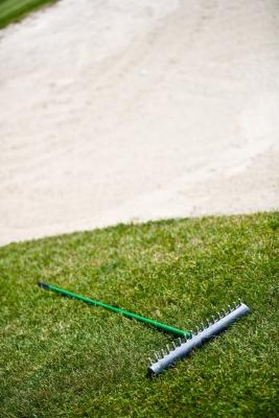 What Kind of Grass Is Used on Golf Courses?