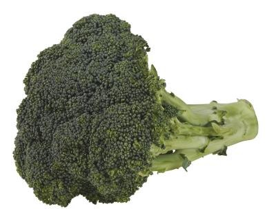 Is There Fiber in Broccoli Stems?