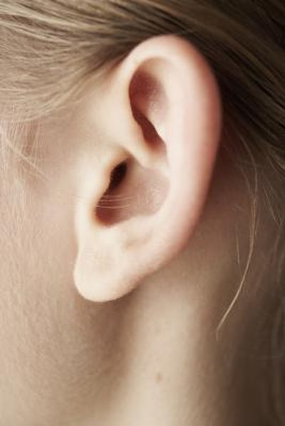Are There Foods That Can Drastically Reduce Tinnitus?